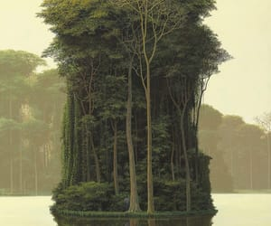 art, enchanted forest, and tomas sanchez image