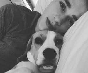 ben hardy, dog, and handsome image