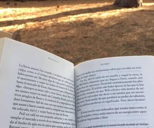 autumn, books, and lake tahoe image