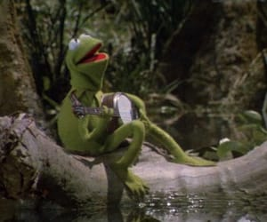 kermit, kermit the frog, and muppets image