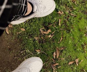 grass, white, and airmax image