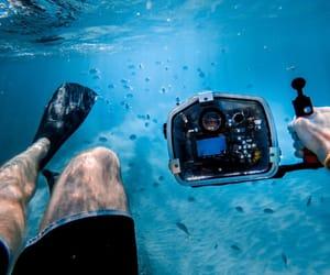 bali, marins, and plongee image
