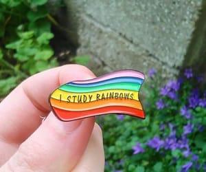 gay, rainbow, and lgbtq image