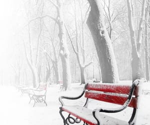 bench, red, and snow image