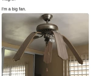 fan, funny memes, and limp image