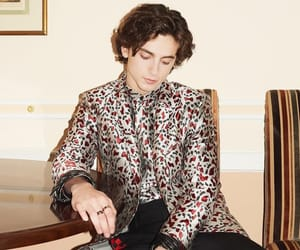 timothee chalamet and timmy image