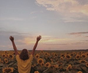 aesthetic, girl, and sunflower image