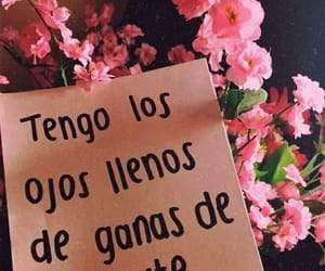 amor, quotes, and ojos image