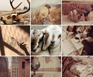 aesthetic, brown, and capricorn image