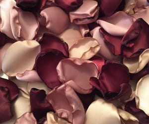 beauty, gold, and petals image