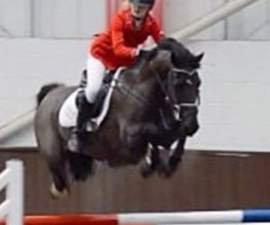 black, equestrian, and jump image