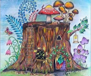 Fairies, gnomes, and mushrooms image