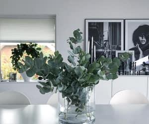 black, Blanc, and frames image