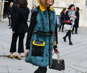 fashion, fur vest, and fur coat image