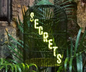 cage, green, and neon image