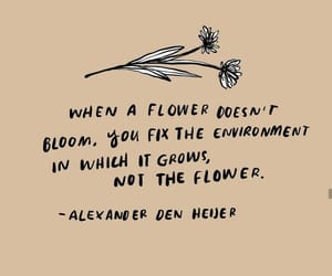 quotes, empowerment, and flower image