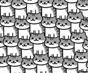 cat, meow, and catlady image