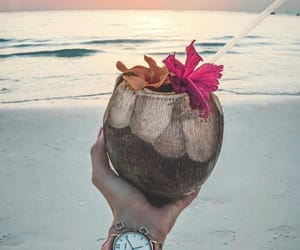 beach, coconut, and girl image