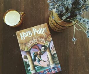 book, brown, and harry potter image