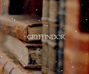 gif, harry potter, and hermione granger image
