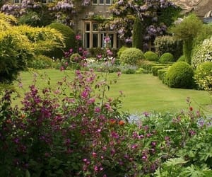 house, garden, and flowers image