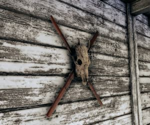barbed, fallout, and wall image