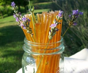 honey, lavender, and nature image