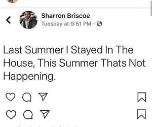 summer, vacation, and facts image