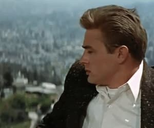 gif, james dean, and rebel without a cause image