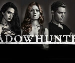 article, books, and shadowhunters image