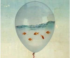 Animales, fish, and pop-surrealismo image