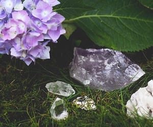 crystals, flower, and garden image