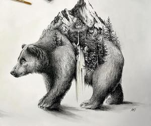 adventure, bear, and cabin image