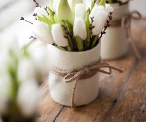 flowers, white, and spring image