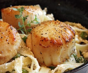food, pasta, and scallop image