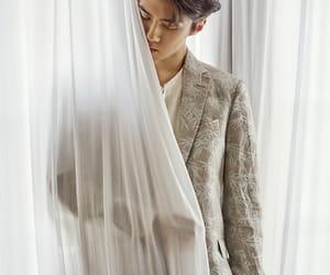 boyband, exo, and korea image