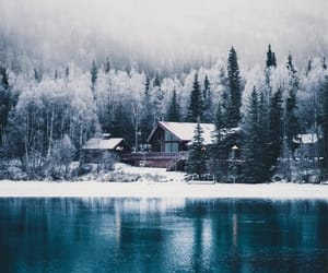 forest, lake, and snow image