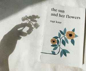 book, shadow, and sunflower image