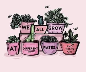 evolve, grow, and like image