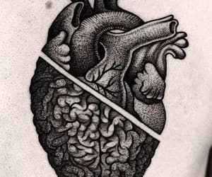 choose, heart, and mind image