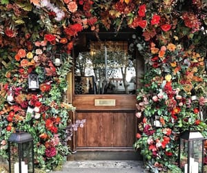 flowers, door, and floral image