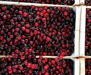 cherry, red, and crimson image
