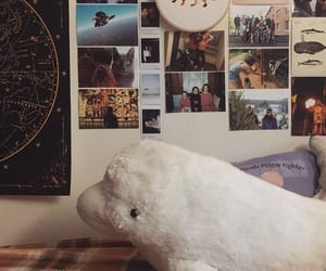 college, cool room, and dorm image