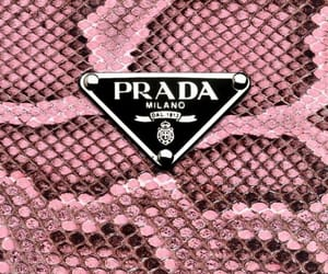 Prada, pink, and wallpaper image