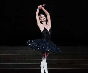 ballet, swan lake, and ladysuzanne image