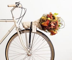 bicycle, colours, and flower image
