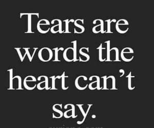 heart, words, and mood image