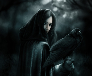 art, crow, and gothic image