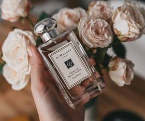 fashion, fragrance, and lifestyle image