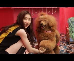 girl group, JYP, and k-pop image